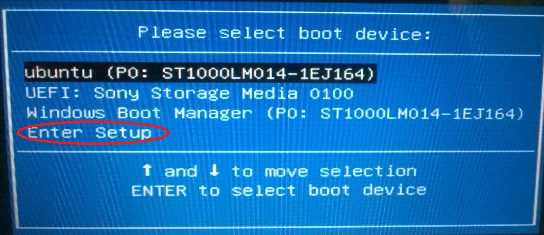 boot option2.jpg