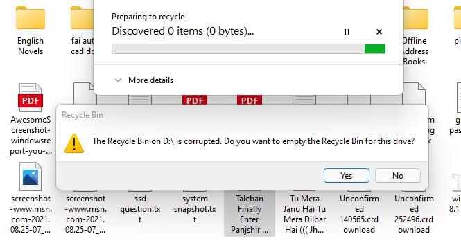 RecycleBiniscorruptedScreenshot 2021-08-26 031114.png